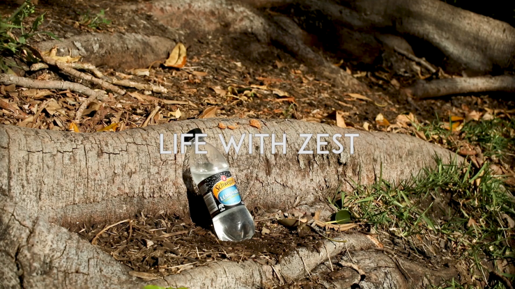 Life With Zest.png